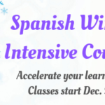 Spanish Immersion Courses